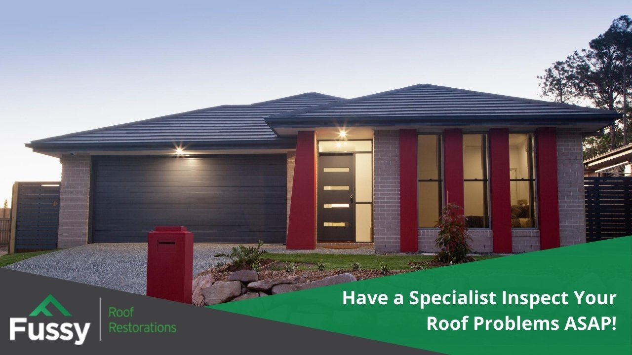 Have a Specialist Inspect Your Roof Problems ASAP!