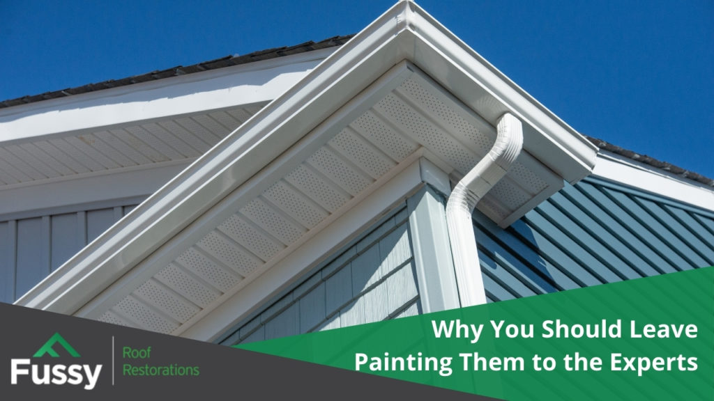 Why You Should Leave Painting Them to the Experts